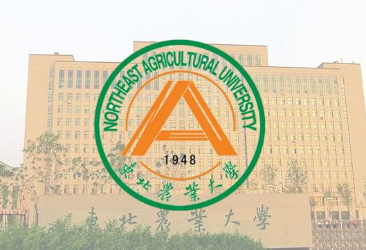 东北农业大学网络教育