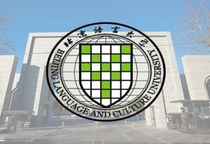 北京语言大学网络专业
